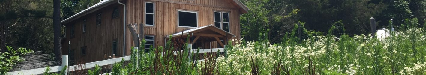 Timber Framing and Woodworking Classes