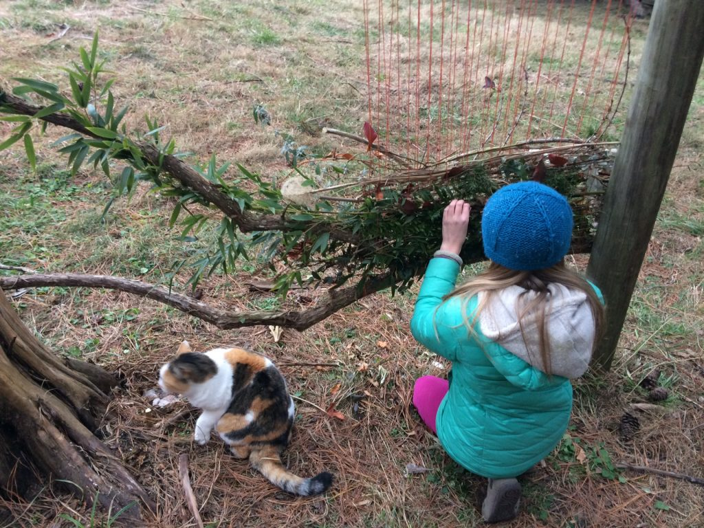 Child weaves branches of leaves through strings on a branch. She's wearing a blue hat and a calico cat is sitting at her side.